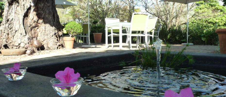 breakfastpatio3 - Trendy Five Star Boutique Guest Retreat – 1 ha with possibility to add 2 more hectares