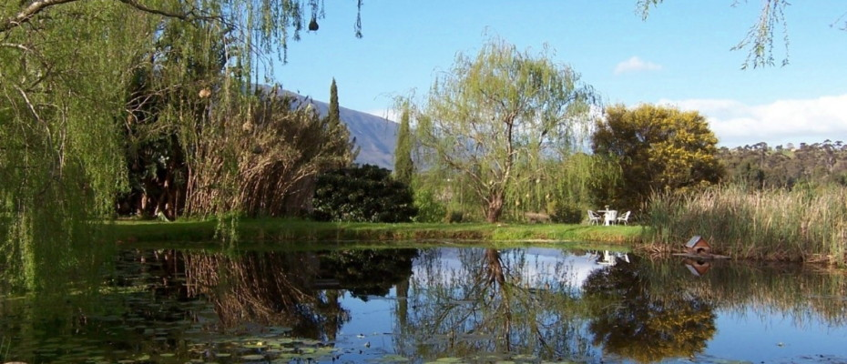 Lily Pond - Trendy Five Star Boutique Guest Retreat – 1 ha with possibility to add 2 more hectares