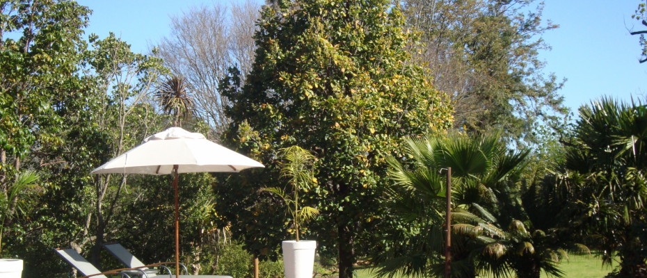 Pool Area - Trendy Five Star Boutique Guest Retreat – 1 ha with possibility to add 2 more hectares
