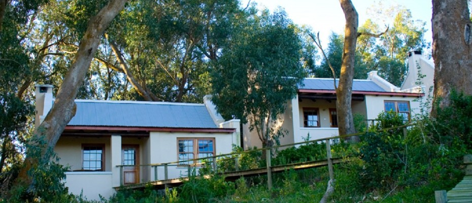 Beach Front Lodge (6) - Guest Lodge on a 3,5km Unspoilt and Pristine Beach near Cape St Francis