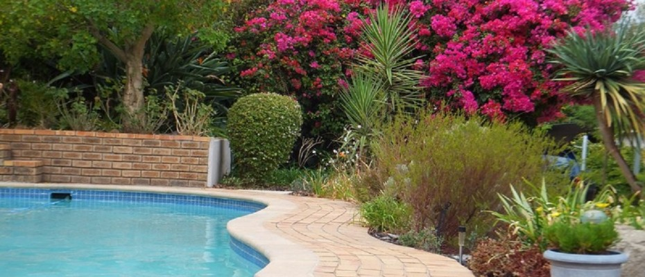 Paarl 12 - CHARMING GUEST HOUSE SITUATED IN THE CAPE WINELANDS