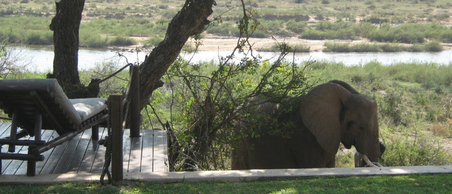 IMG_2635 - Luxurious Guesthouse Bordering the Kruger Park and overlooking the Crocodile River – Sold by us
