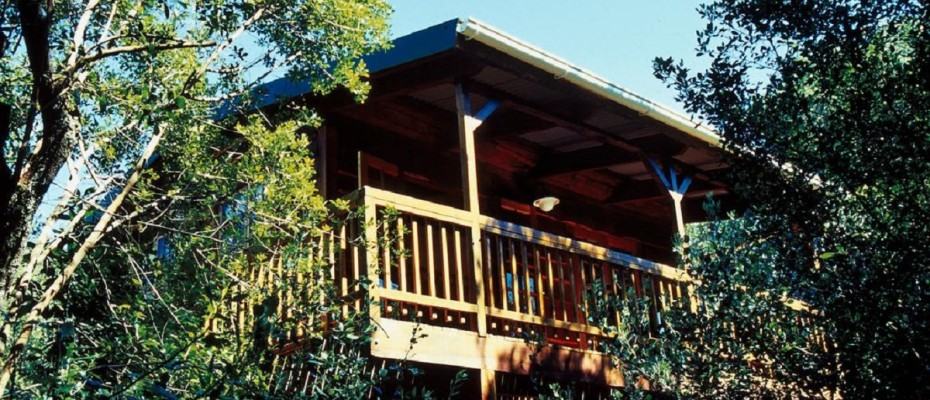 8 - 6 Self-catering Cottages and Owners House – The Crags – Plettenberg Bay -Garden route