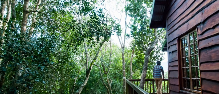 Main Picture - 6 Self-catering Cottages and Owners House – The Crags – Plettenberg Bay -Garden route